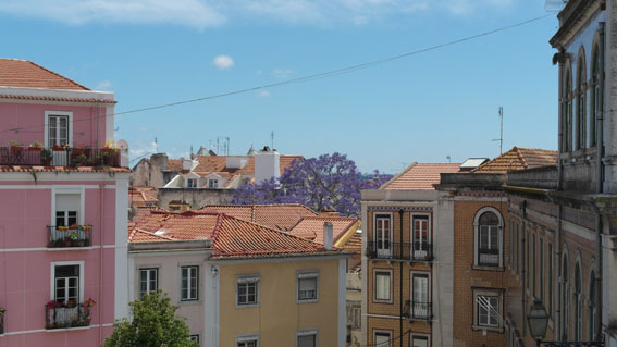 Lissabon_Stadtblick_FACTS4EMOTION_06045533